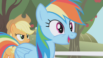 "Rainbow Dash ""A chance to audition for The Wonderbolts"" S01E03"