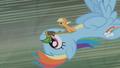 Applejack and Rainbow flying toward Zecora's hut S1E09.png