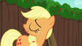 "Applejack ""are you an Apple"" S6E14.png"