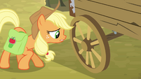 Applejack asking about the wagon S4E09