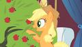 Applejack talks to the tree S1E21.png