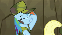 "Rainbow Dash ""One tough stain for one lame dragon..."" S2E21"