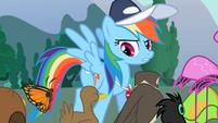 Rainbow Dash with the animals S2E07