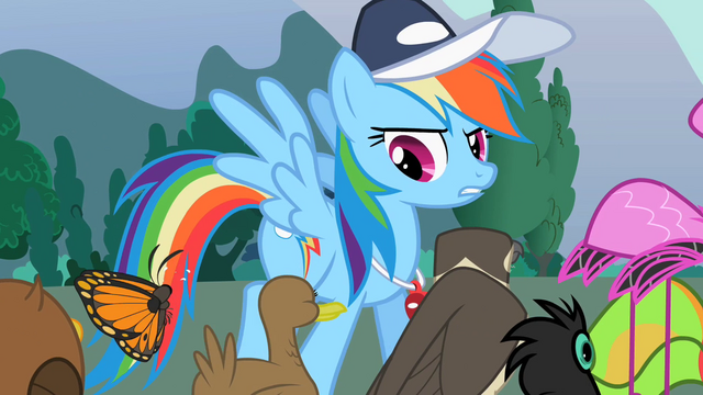 File:Rainbow Dash with the animals S2E07.png