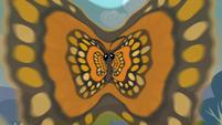Butterfly hypnotizing S2E07