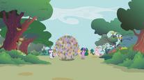 Parasprite boulder rolling through the forest S01E10
