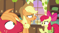 "Apple Bloom asks her siblings ""why?"" S7E13.png"