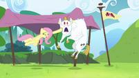 Fluttershy hits Bulk with horseshoe S4E10