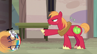 Scootaloo stumbling toward Big McIntosh S7E8