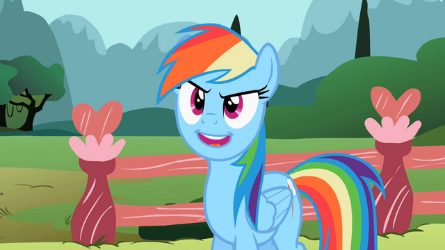 File:Rainbow Dash 'Can't settle for less' S2E07.png