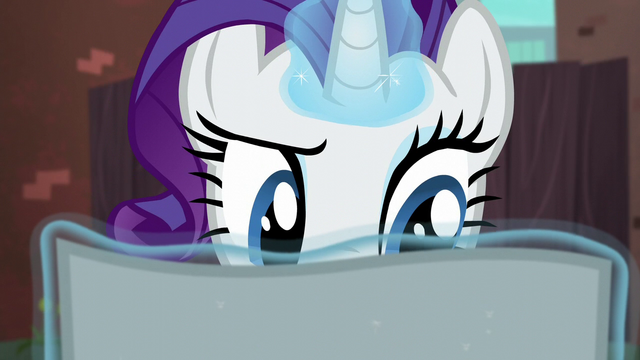File:Rarity reading the flyer S5E16.png