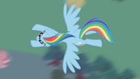 Rainbow in flight overhead shot S1E03