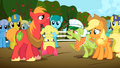 Apple Bloom upset S2E15.png