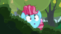 Chiffon Swirl spying through the bushes S7E13.png