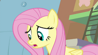 "Fluttershy ""Seabreeze has a point"" S4E16"