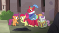 Apple Bloom asks Scootaloo if there's any sign of Feather Bangs S7E8.png