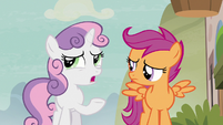 "Sweetie Belle ""trick a pony into drinking a love potion"" S7E8"