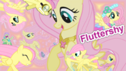FANMADE Fluttershy Collage Mewkat14