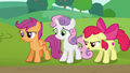 "Apple Bloom ""I don't think they're really helping anymore"" S6E14.png"