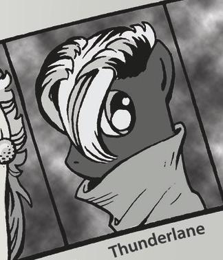 Teen Thunderlane ID