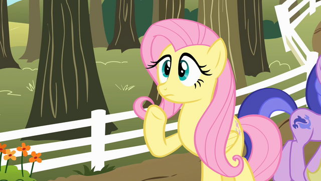 """File:Fluttershy """"Uh... Pinkie Pie...?"""" S2E15.png"""