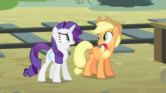 File:Applejack and Rarity 'We did' S4E11.png