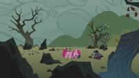 Filly Pinkamena on the rock farm S5E25