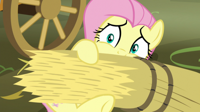 File:Fluttershy covering herself in hay S5E21.png