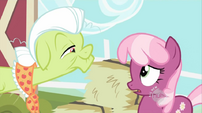 Granny Smith Cheerilee talking S02E12