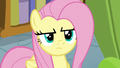 Fluttershy disapproves of her brother's actions S6E11.png