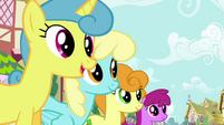 Pinkie Pie's song pony crowd 4 S2E18