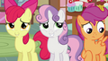 CMC play cool S2E17.png
