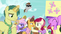 Crowd of ponies goes back to arguing S7E14.png