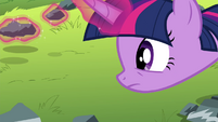 Twilight levitating rocks S4E18