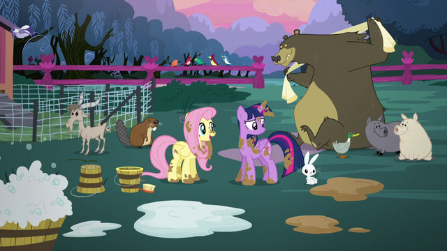 File:Twilight and Fluttershy surrounded by clean animals S5E3.png