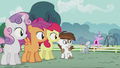 CMC, Pip, and Silver see Diamond Tiara mad S5E18.png