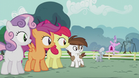 CMC, Pip, and Silver see Diamond Tiara mad S5E18