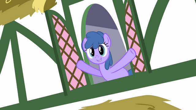 File:Window ponies 2 S2E18.png