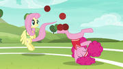 Fluttershy and Pinkie continue to have fun S6E18
