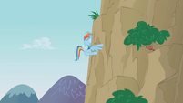 Rainbow meets mountain S1E05