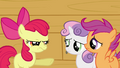 Apple Bloom pointing at Sweetie Belle and Scootaloo S3E04.png