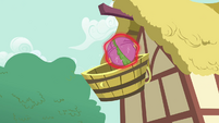 Spike about to be fallen into the basket S3E05