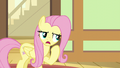 Fluttershy allows Zephyr Breeze to stay S6E11.png