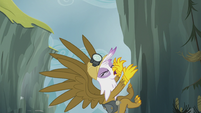 Gilda dragged along by Pinkie's stunt S5E8