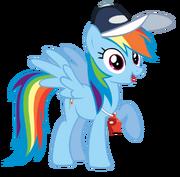 FANMADE Rainbow Dash Coach