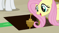 Fluttershy finds the room key S7E2.png