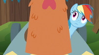 Rainbow looking at cardboard chicken head S6E14
