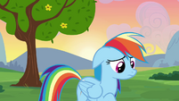 Rainbow Dash wondering what to do S2E16