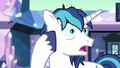 """Shining Armor """"and confusing"""" S6E1.png"""