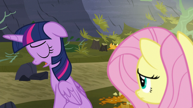 "File:Twilight ""they're just gonna fight again"" S5E23.png"